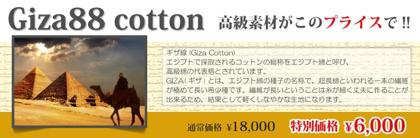 Giza88コットン